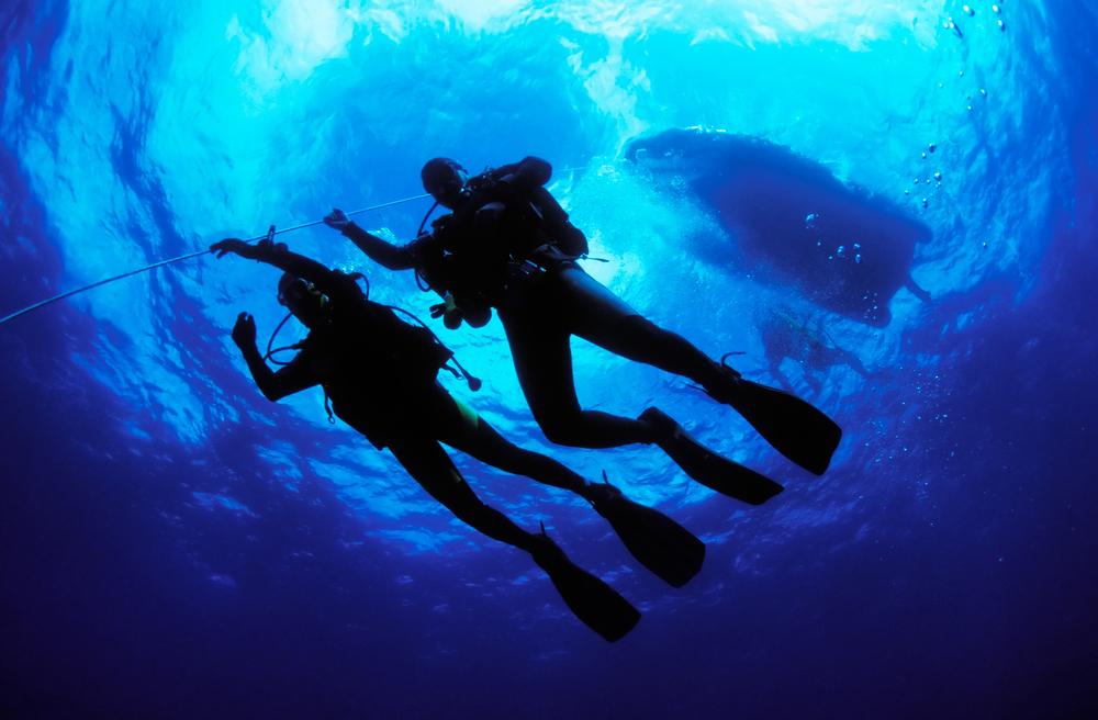 Scuba-divers-782083