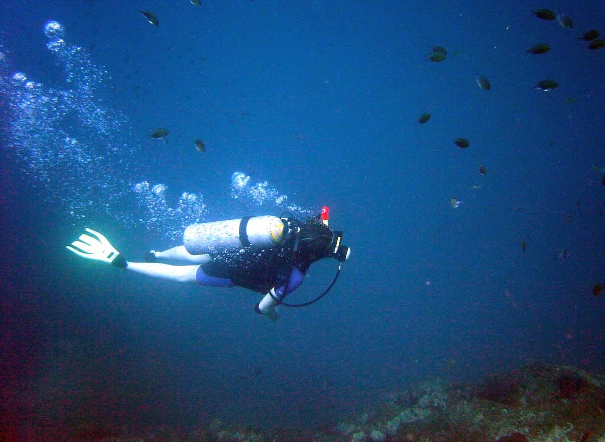 scuba-diver-fish-i8