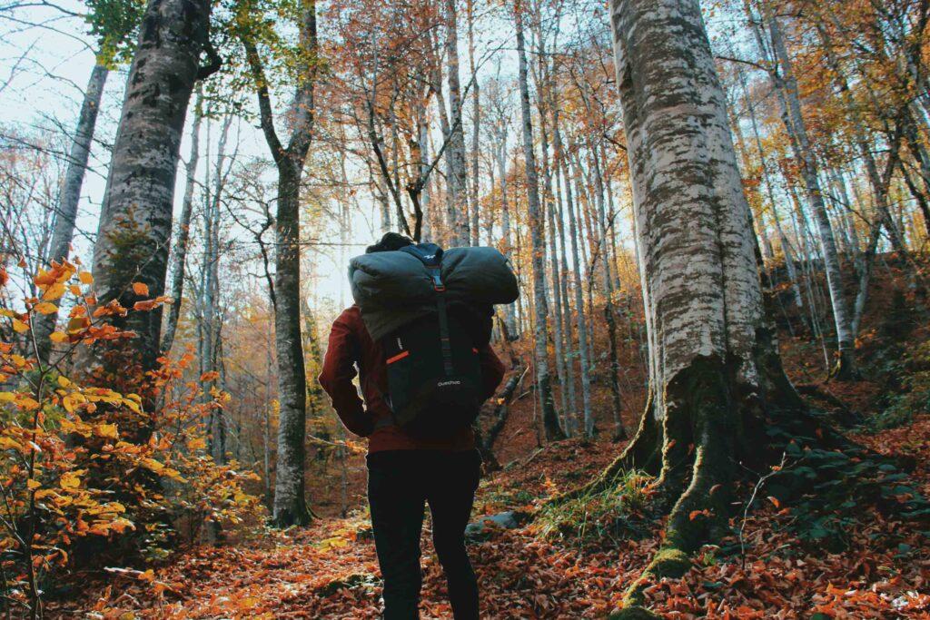 Mand med vandrerygsæk i en dansk bøjeskov
